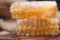 【蜜蜂养殖】一箱蜜蜂一年能产多少蜂胶?
