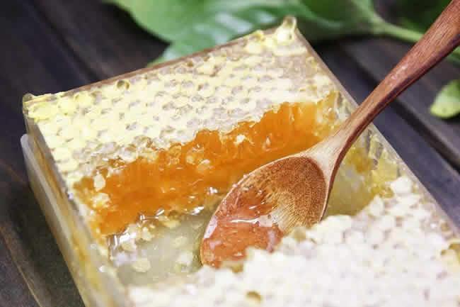中蜂能产巢蜜