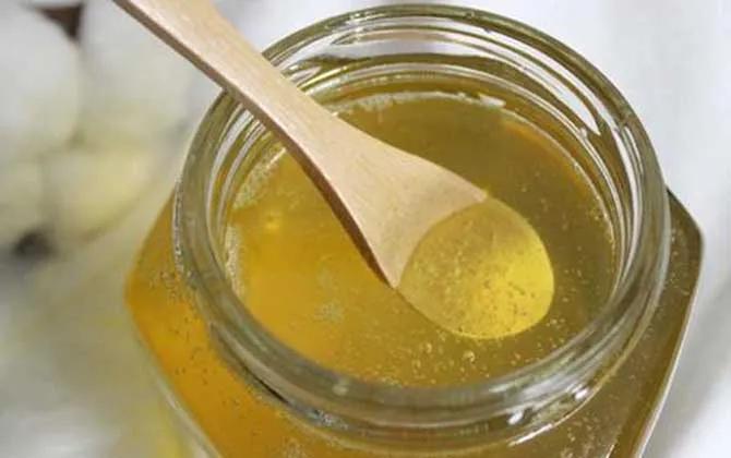 荔枝蜂蜜价格多少钱一斤才是真的?