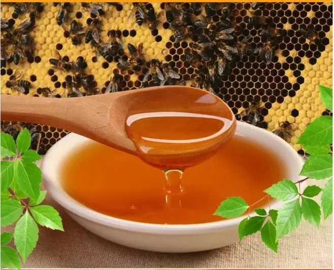 新疆蜂蜜是什么蜜蜂产的(新疆的蜂蜜品种都有哪些)