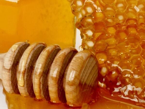 真正的蜂蜜和一般的蜂蜜有什么区别(什么样的蜂蜜才是真正的蜂蜜)