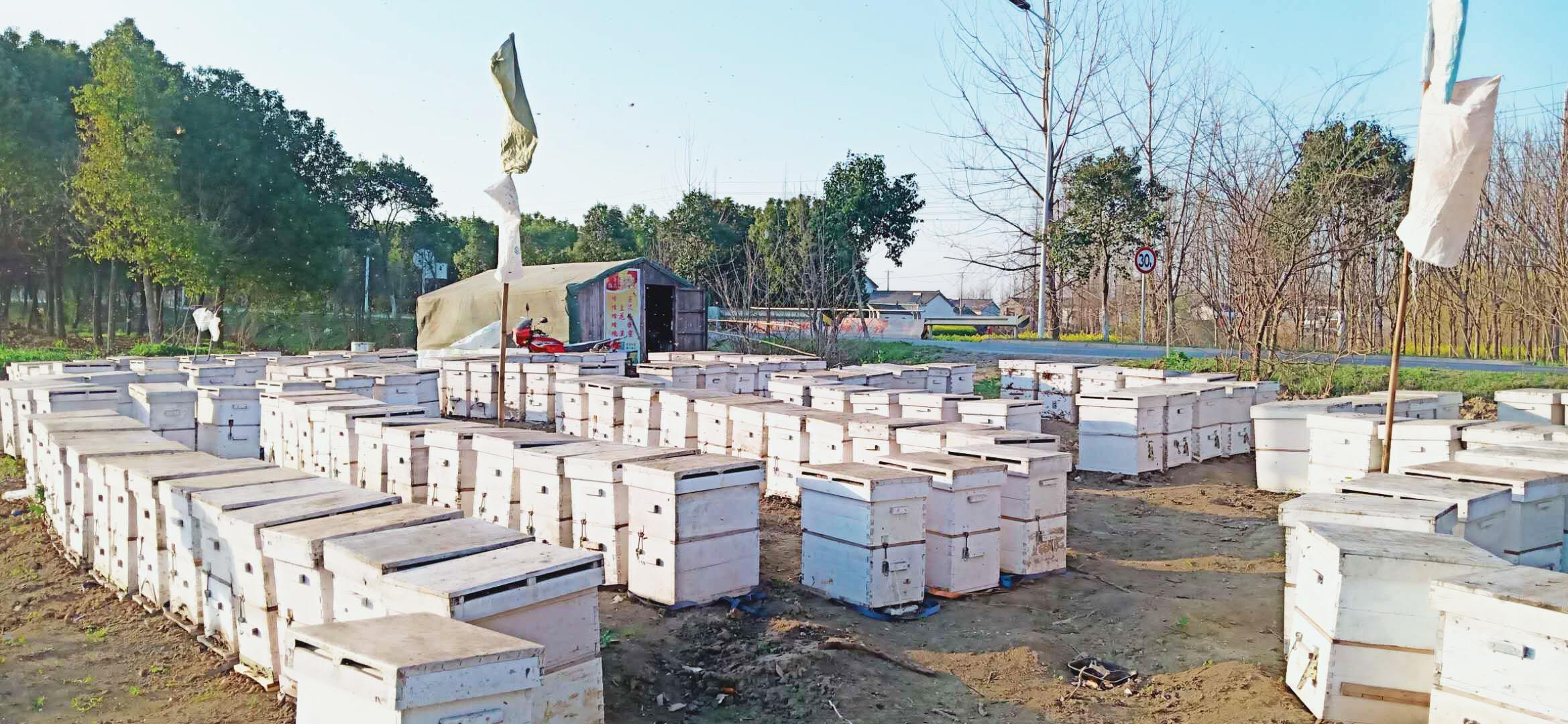 新手养蜂买什么样的蜂箱(养蜂用什么蜂箱好)