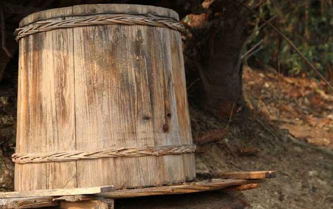 蜂箱的种类及优点和缺点(什么样的蜂箱最好)
