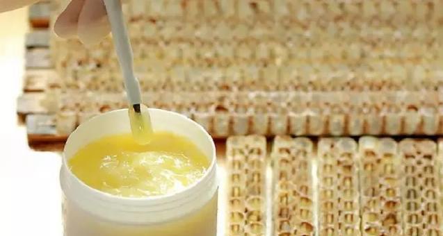 蜂王浆质量好坏的鉴别(什么样的蜂王浆才是正宗的)