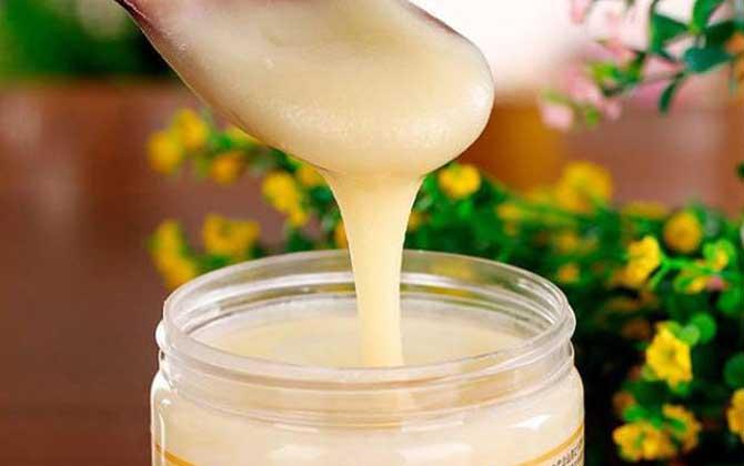黑蜂蜂蜜的作用与功效及食用方法