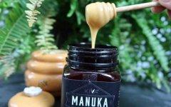 麦卢卡蜂蜜(麦卢卡蜂蜜的正确吃法)