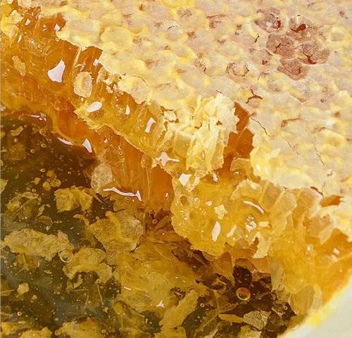 蜜蜂多久出一批蜜