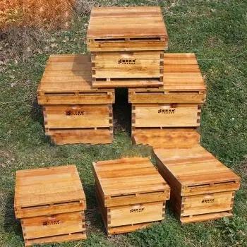 泡桐板能不能做中蜂蜂箱