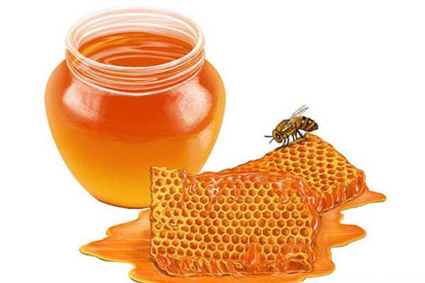 枸杞蜂蜜是什么颜色(枸杞蜜的功效)