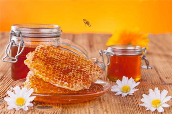 枸杞蜂蜜是凉性的吗