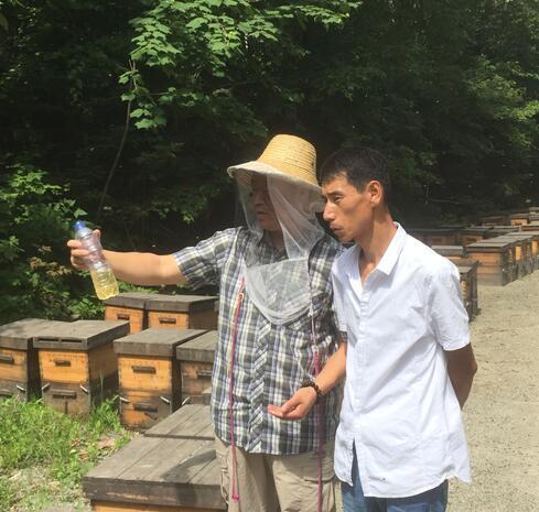 椴树蜂蜜儿童可以喝吗(椴树蜂蜜对儿童的功效)
