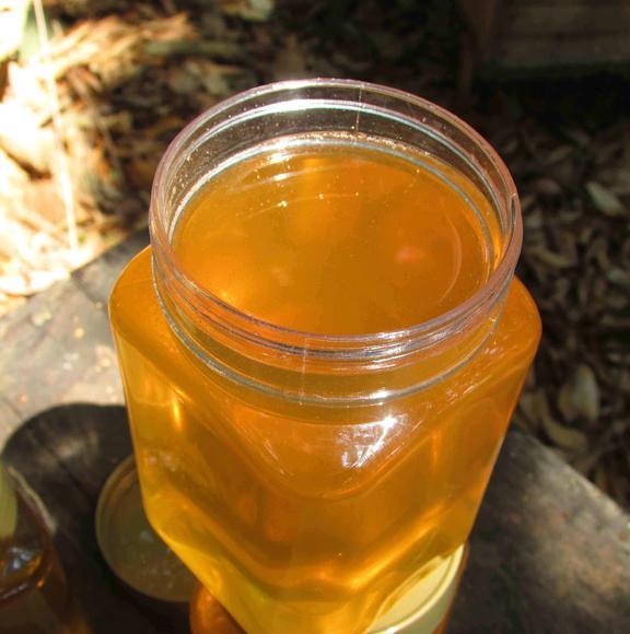 感冒咳嗽喝冬蜜好还是荔枝蜜好(感冒可以喝蜂蜜么?)