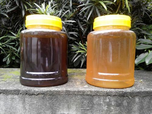 荔枝蜜发酸是坏了吗(荔枝蜜变质的因素)