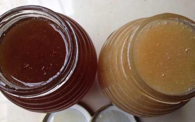 荔枝蜜和乌桕蜜的区别(荔枝蜜和乌桕蜜哪个好?)