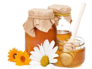乌桕蜜味道怎么样(乌桕树蜂蜜有什么特点?)