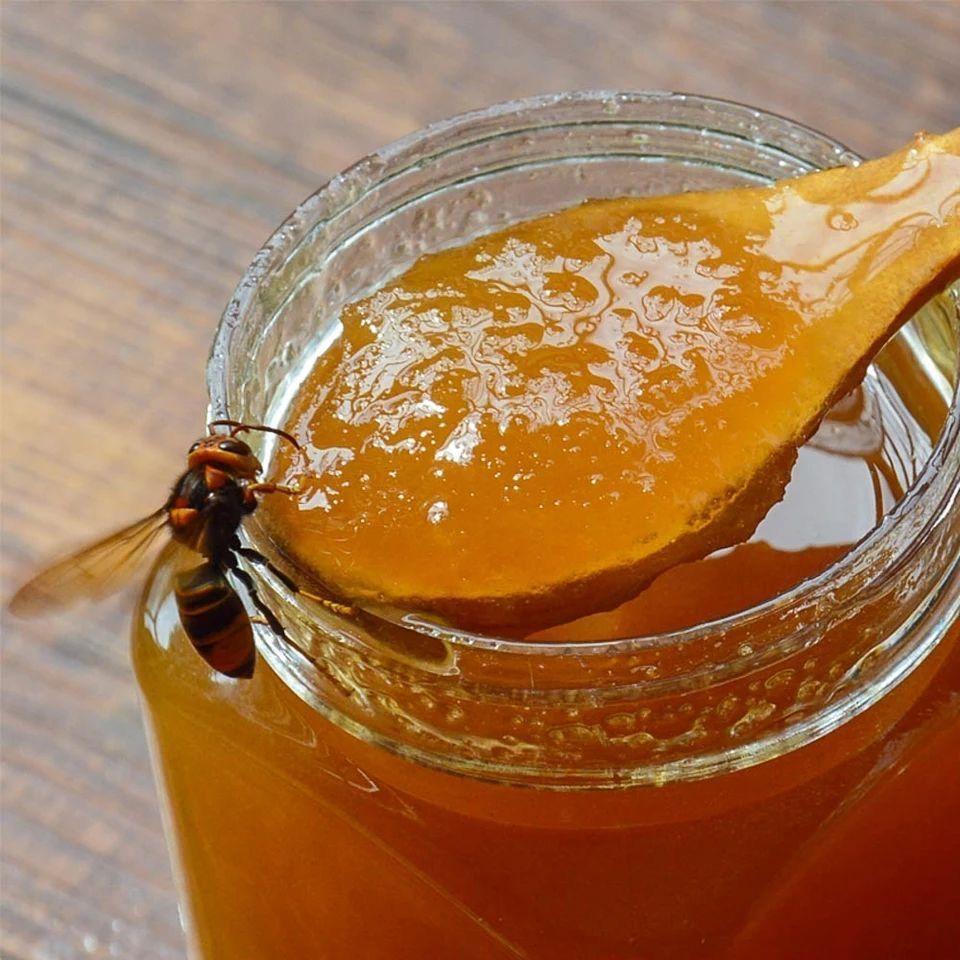 怀孕喝洋槐蜜好还是乌桕蜜好(怀孕期间喝什么花的蜂蜜好呢)