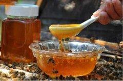 中蜂枣花蜜产量(一群中蜂一年能产多少蜂蜜)
