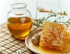 油菜蜜和土蜂蜜的区别(怎么辨别油菜蜜和土蜂蜜)